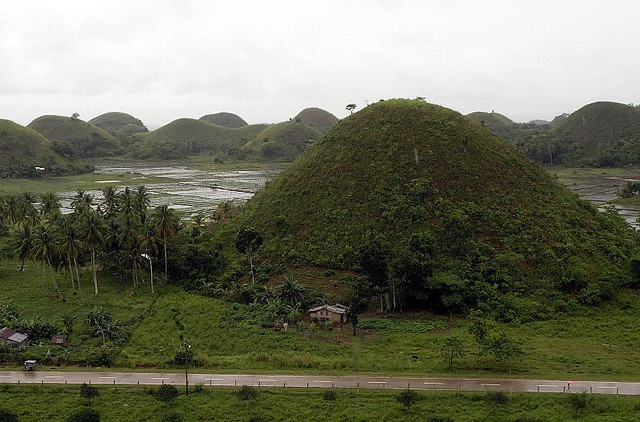 Chocolate Hills and rice fields